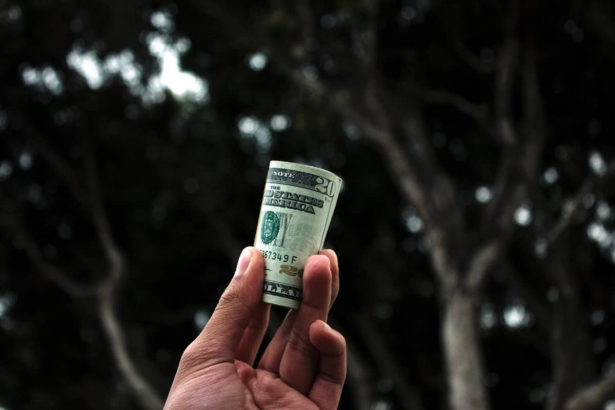 Image of a hand holding a roll of $20 bills.