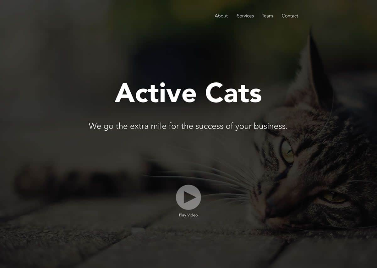 Homepage of Active Cats website claiming to go the extra mile for the success of your business. The emotions conveyed through the choice of images however is not effective and makes it not a piece of great visual design.