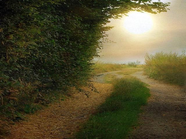 A photo of a path leading through a grassy field under a balmy sky.