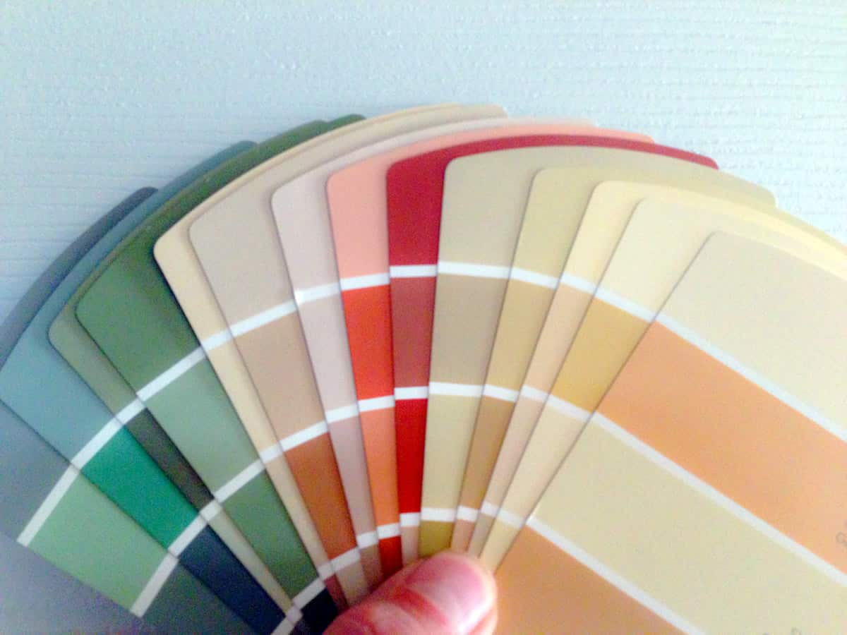 A photo of a person holding multiple color swatches, spread out into a fan.