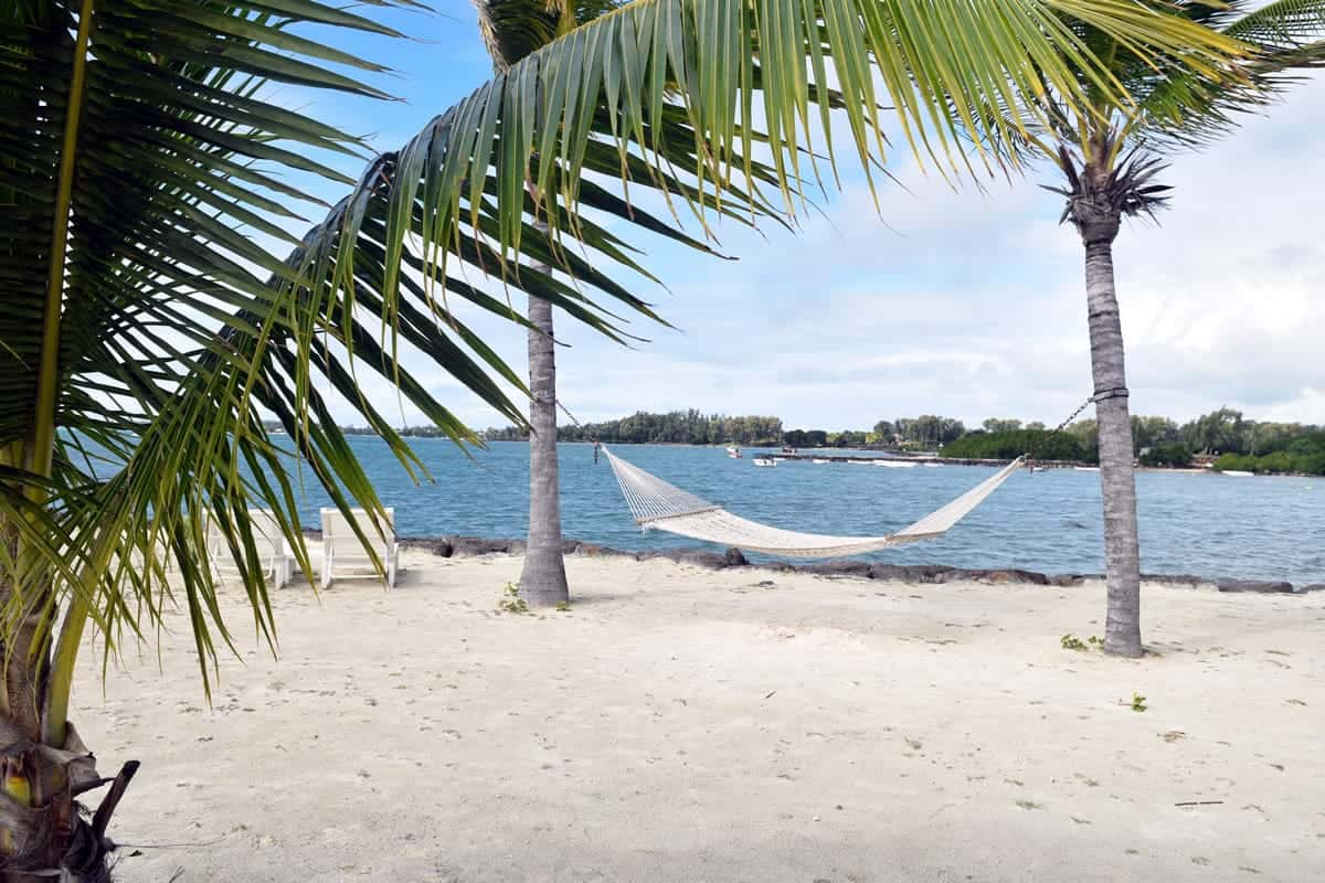 A hammock tied onto two palm trees on the beach.