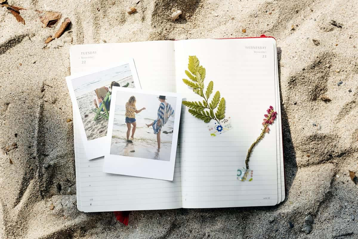 A notebook with photos and plants on a sandy beach.