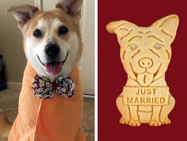 "A photo of a cookie designed to look like a couple's dog with a ""Just Married"" sign for their wedding day, next to the original photo of the dog."