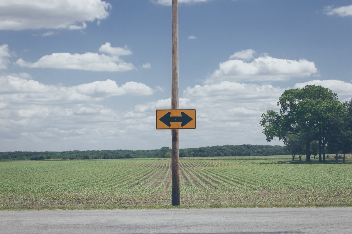 A road with a sign with arrows in both directions and a field in the background.